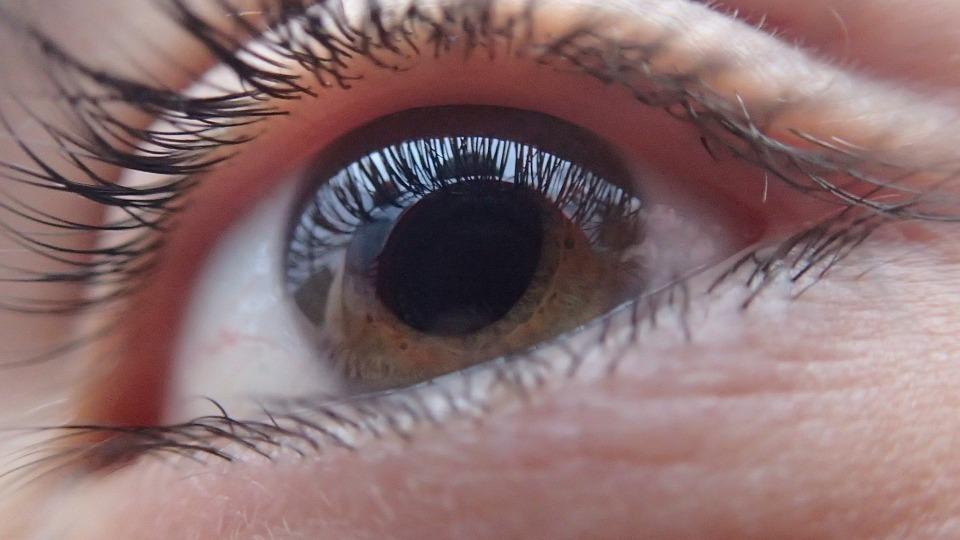 Optometria e visual training, novità al Koinos