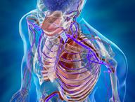 Chirurgia generale e vascolare