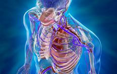 Presso gli Studi Medici Koinos è presente un chirurgo vascolare che riceve con tempi di attesa rapidi.